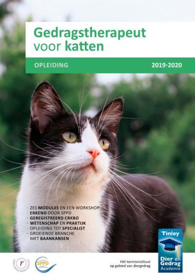 Kattengedrag bestuderen met Marieke van der Burgt